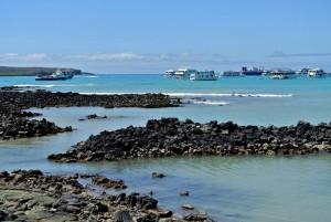tour du monde famille Séchet - Galapagos - 8 (Copier)
